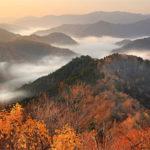 白い雲海に紅葉の山々、幻想的に 滋賀・小入谷 : 京都新聞