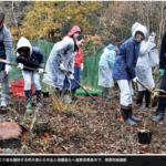 植林:どんぐり苗を 朽木東小6年生、種まきから育てる 高島 /滋賀 – 毎日新聞