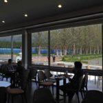 メタセコイヤ並木一望のカフェ開業 旬のフルーツ使うスイーツも : 京都新聞