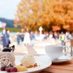 滋賀・高島市のメタセコイア並木、絶景カフェが人気(Lmaga.jp) – Yahoo!ニュース